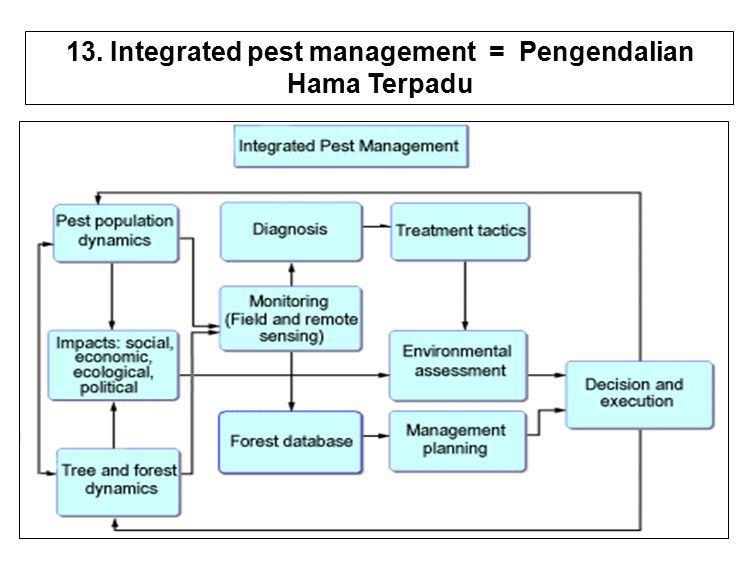 29 13. Integrated pest management = Pengendalian Hama Terpadu