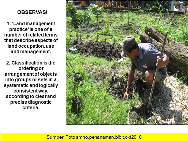 OBSERVASI 1. 'Land management practice' is one of a number of related terms that describe aspects of land occupation, use and management. 2. Classific