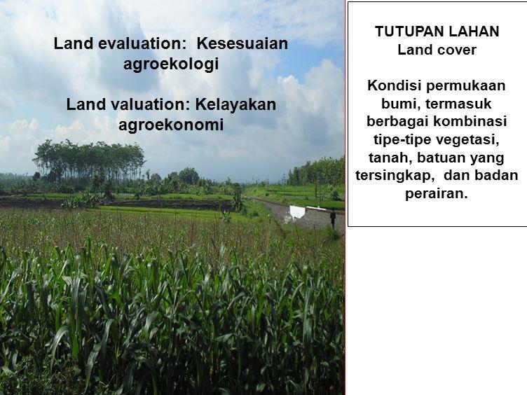 TUTUPAN LAHAN Land cover Kondisi permukaan bumi, termasuk berbagai kombinasi tipe-tipe vegetasi, tanah, batuan yang tersingkap, dan badan perairan.
