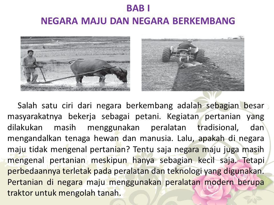 BAB I NEGARA MAJU DAN NEGARA BERKEMBANG Salah satu ciri dari negara berkembang adalah sebagian besar masyarakatnya bekerja sebagai petani. Kegiatan pe