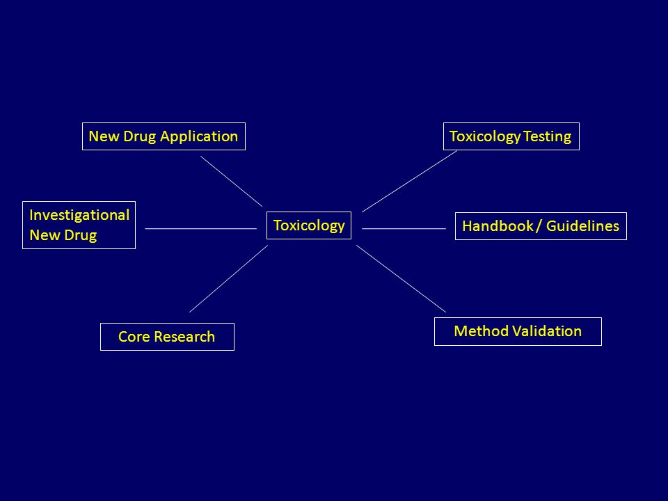 New Drug Application Investigational New Drug Toxicology Toxicology Testing Handbook / Guidelines Core Research Method Validation