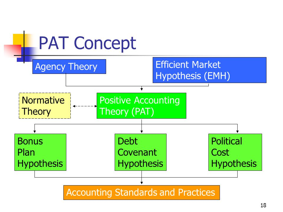 18 PAT Concept Agency Theory Efficient Market Hypothesis (EMH) Positive Accounting Theory (PAT) Bonus Plan Hypothesis Political Cost Hypothesis Debt Covenant Hypothesis Accounting Standards and Practices Normative Theory
