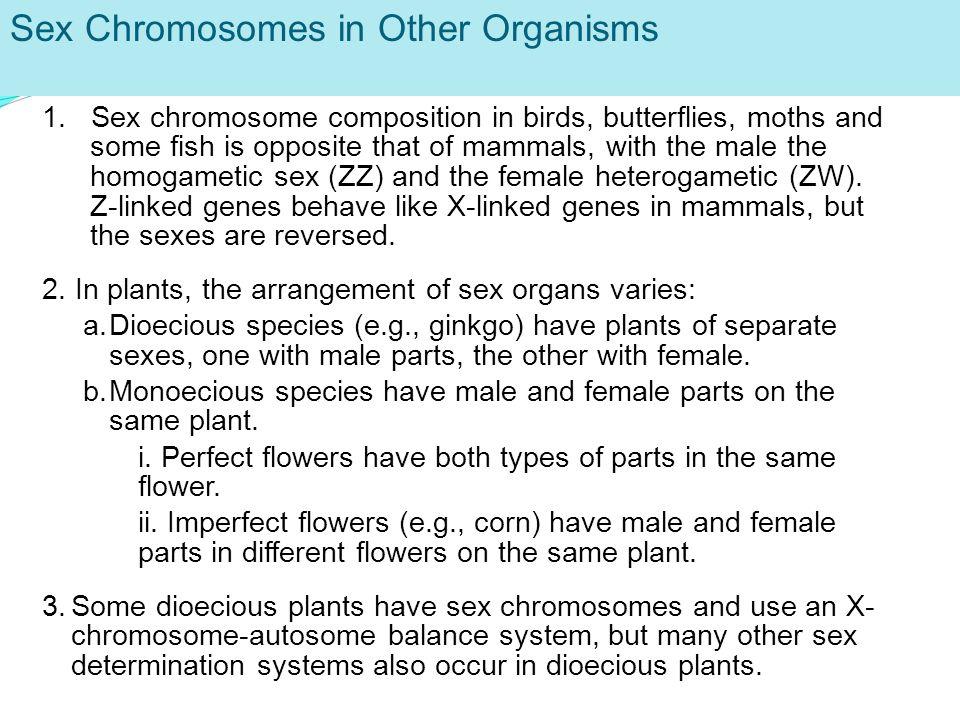 KONTROL PENAMPILAN SEX Penyerbukan pada tumbuhan penyerbukan silang (alogami) penyerbukan sendiri (autogami).
