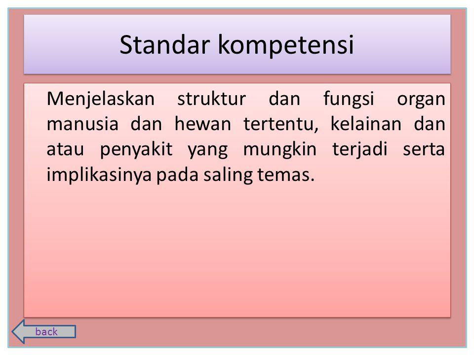 Standar kompetensi Kompetensi dasar indikator Sistem ekskresi pada invertebrata Sistem ekskresi pada vertebrata Sistem ekskresi pada manusia Hati Kulit Paru - Paru Paru - Paru Ginjal home exercise