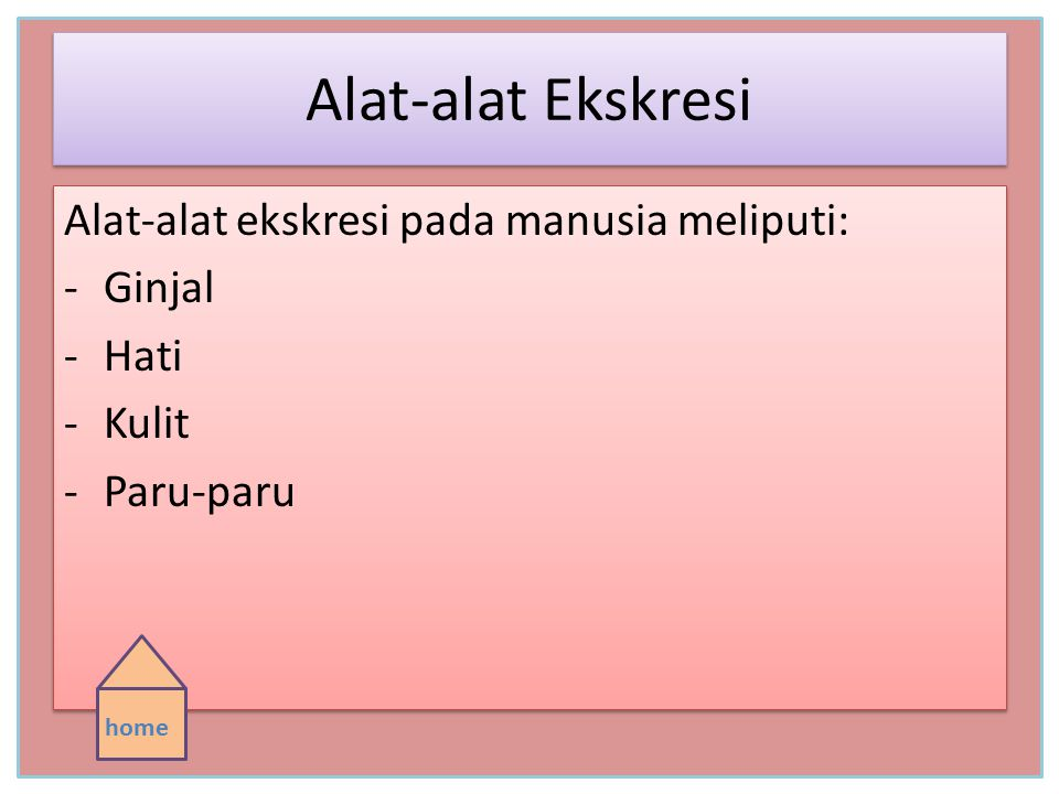 Alat-alat Ekskresi Alat-alat ekskresi pada manusia meliputi: -Ginjal -Hati -Kulit -Paru-paru Alat-alat ekskresi pada manusia meliputi: -Ginjal -Hati -Kulit -Paru-paru home