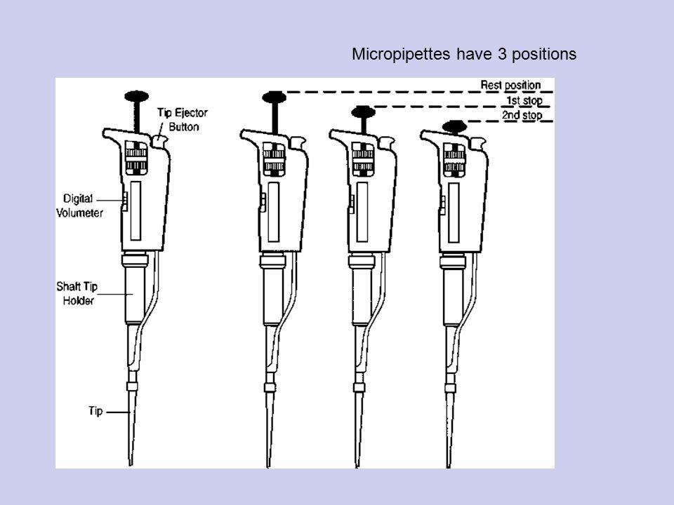 Multichanel pipetor