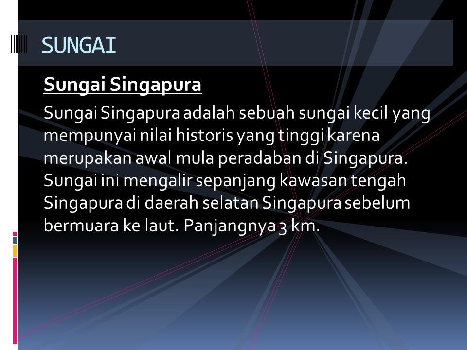 Sungai Singapura Sungai Singapura adalah sebuah sungai kecil yang mempunyai nilai historis yang tinggi karena merupakan awal mula peradaban di Singapu
