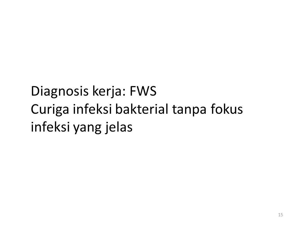 15 Diagnosis kerja: FWS Curiga infeksi bakterial tanpa fokus infeksi yang jelas