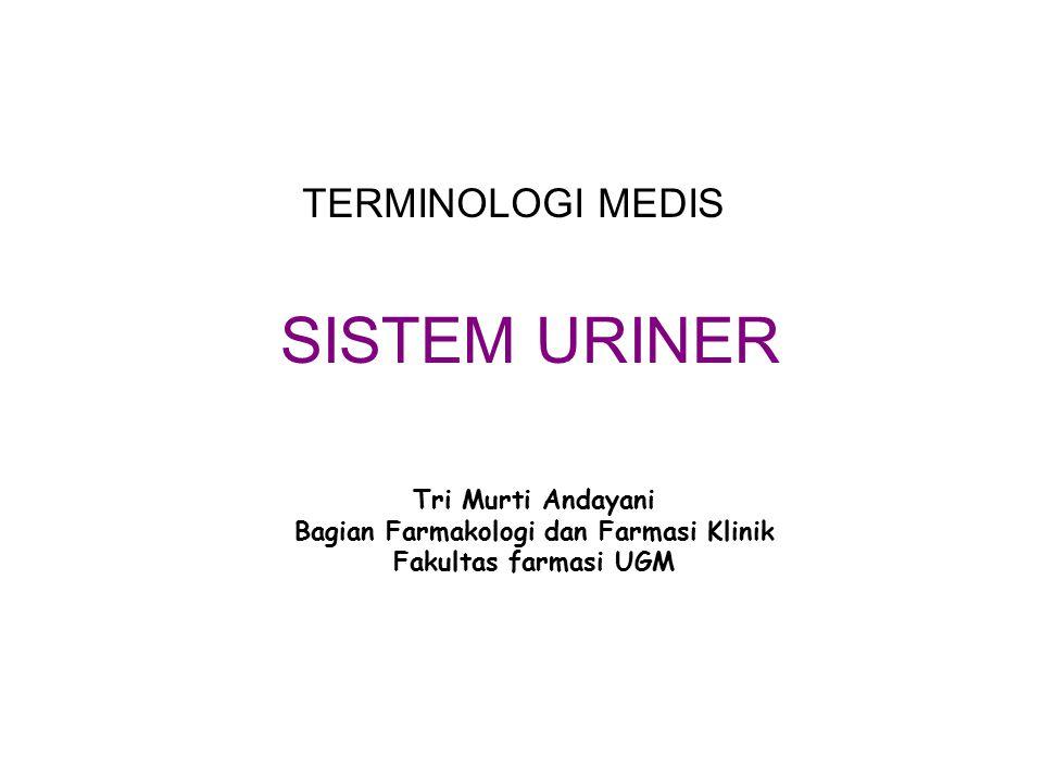 EKSKRESI SAMPAH TUBUH Tubuh menghasilkan sampah yg dieliminasi dg proses ekskresi paru-paru ~ karbondioksida sistem pencernaan ~ sampah padat kulit ~ perspirasi urinasi ~ ginjal, ureter, kandung kemih dan urethra (sistem uriner) Eliminasi sampah oleh ginjal Urea (ur/o : urine) ~ produk akhir metabolisme protein ~ sampah nitrogen yg trdpt di urine : senyawa Azo Insufficiency renal (in : tdk) ~ penurunan kemampuan ginjal dlm menjalankan fungsinya azotemia Hemodyalisis (hem/o : darah) Peritoneal dialysis (periton/o : peritoneum, + eal : terkait)
