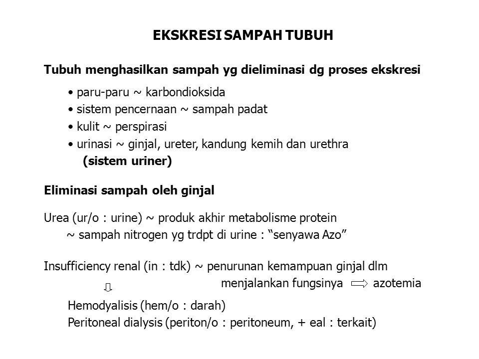 Pyelitis (pyel/o : pelvis ginjal) Pyuria (py/o : pus, +uria : urine) urinary incontinence ( in : tidak) ketidakmampuan utk menahan urine di kandung kemih Salah satunya dialami oleh para ibu hamil Urinary retention ketidakmampuan untuk mengosongkan kandung kemih URINE Urinalysis : pemeriksaan specimen urine dengan test laboratorium Urine normal : tanpa gula, protein, darah glycosuriaproteinuriahematuria (abnormal)