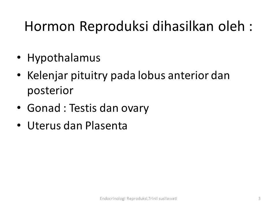 Endocrinologi Reproduksi,Trinil susilawati24 Estrus Tanda-tanda berahi: Menaiki dan mau dinaiki Mengeluarkan suara gaduh Mengeluarkan lendir transparans Keadaan hormon : Progesteron Turun Estrogen Naik LH Naik ----------  Ovulasi