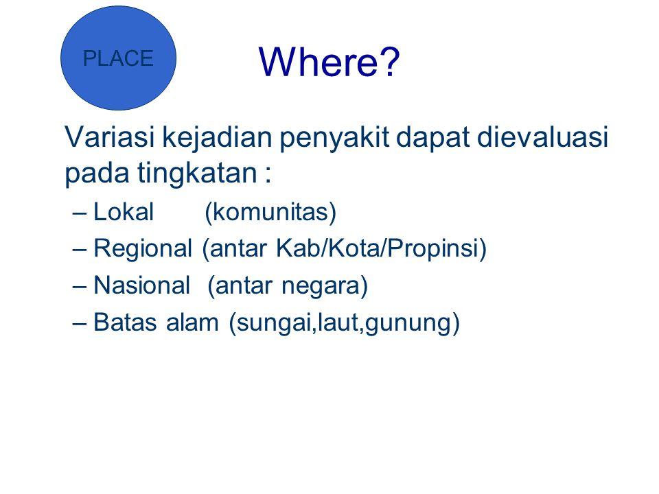 Where? Variasi kejadian penyakit dapat dievaluasi pada tingkatan : –Lokal (komunitas) –Regional (antar Kab/Kota/Propinsi) –Nasional (antar negara) –Ba