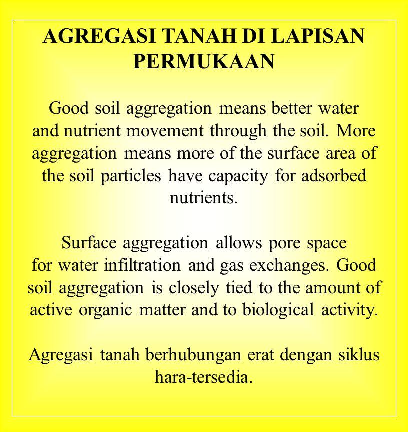 INFILTRASI DAN PERGERAKAN HARA Plants require water.