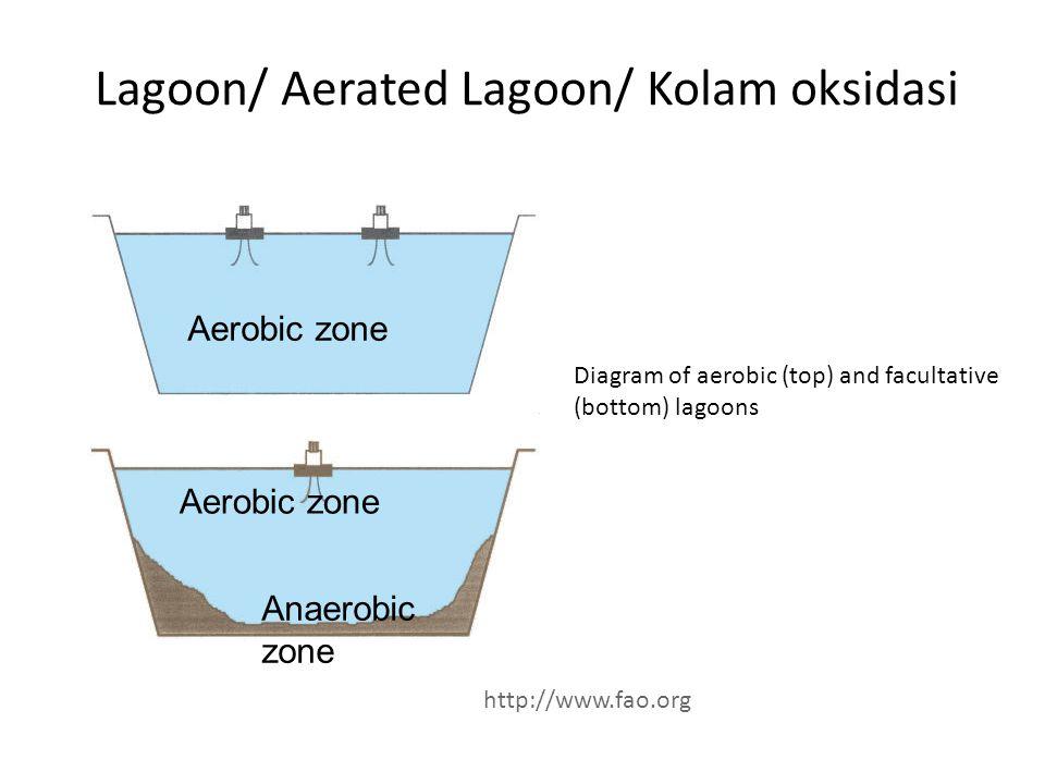Lagoon/ Aerated Lagoon/ Kolam oksidasi Diagram of aerobic (top) and facultative (bottom) lagoons Aerobic zone Anaerobic zone http://www.fao.org