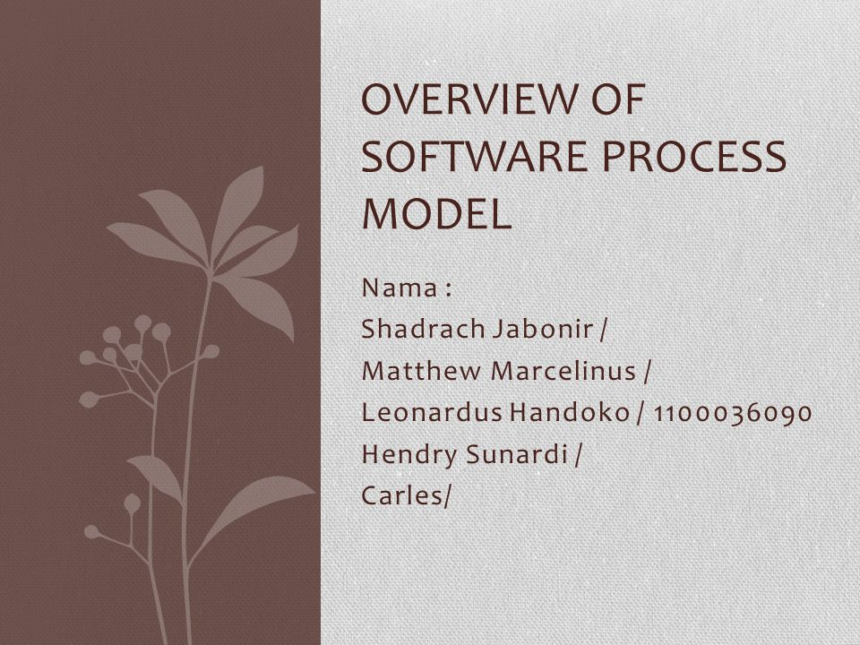 Nama : Shadrach Jabonir / Matthew Marcelinus / Leonardus Handoko / 1100036090 Hendry Sunardi / Carles/ OVERVIEW OF SOFTWARE PROCESS MODEL