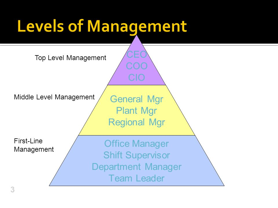 CEO COO CIO General Mgr Plant Mgr Regional Mgr Office Manager Shift Supervisor Department Manager Team Leader 3 Top Level Management Middle Level Mana