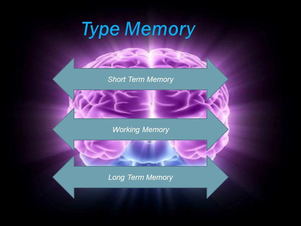 Type Memory Short Term Memory Working Memory Long Term Memory