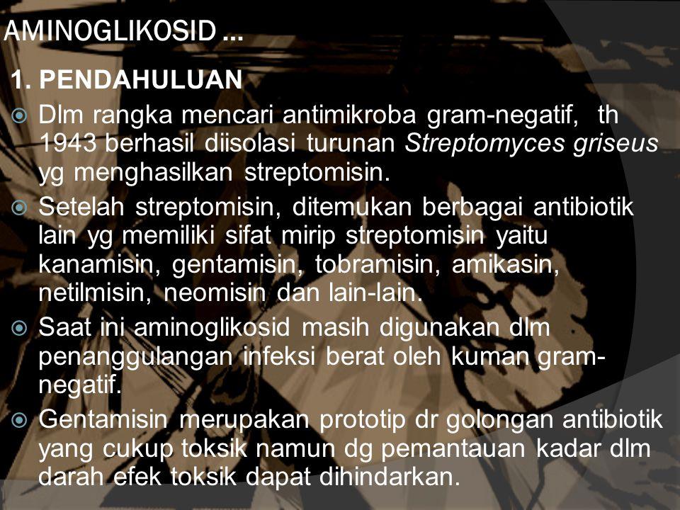 AMINOGLIKOSID … 1.
