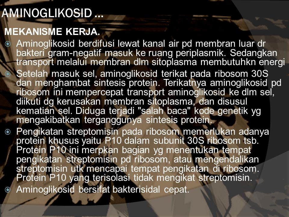 AMINOGLIKOSID … MEKANISME KERJA.