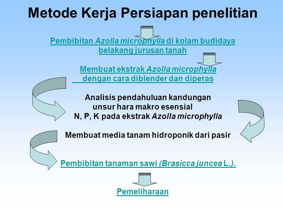 Rancangan yang digunakan pada tahap ini adalah Rancangan Acak Lengkap Faktorial dengan 2 faktor (5x2) dan 3 Ulangan yaitu: Faktor pertama dosis ekstrak Azolla microphylla ( D ) D0: Tanpa pemberian Ekstrak Azolla microphylla setara 0 % N D1: Pemberian 15 ml Ekstrak Azolla microphylla setara 0,135 % N D2: Pemberian 30 ml Ekstrak Azolla microphylla setara 0,27 % N D3: Pemberian 45 ml Ekstrak Azolla microphylla setara 0,405 % N D4: Pemberian 60 ml Ekstrak Azolla microphylla setara 0,54 % N Faktor kedua interval pemberian ekstrak Azolla microphylla ( I ) I 1 : Satu minggu sekali I 2 : Satu minggu dua kali