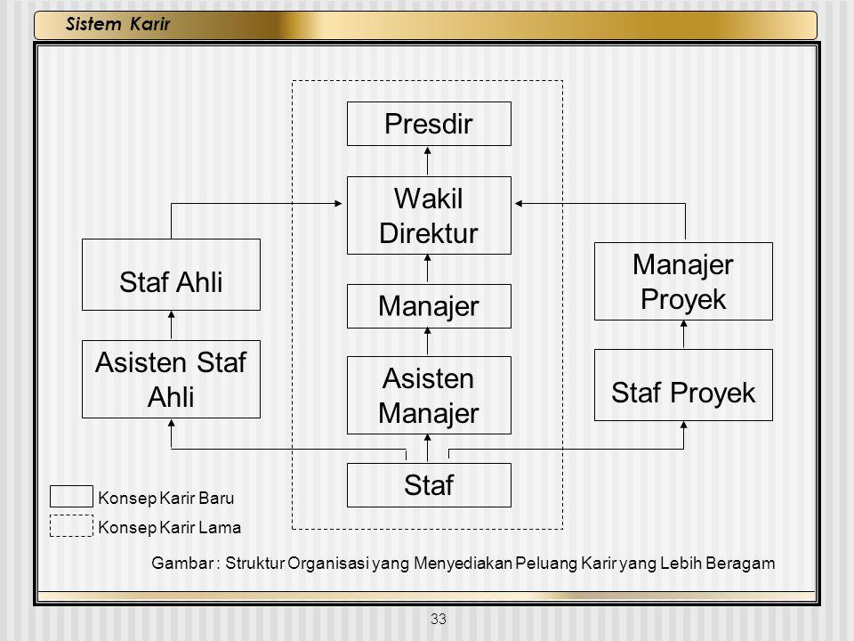 33 Sistem Karir Konsep Karir Baru Konsep Karir Lama Gambar : Struktur Organisasi yang Menyediakan Peluang Karir yang Lebih Beragam Presdir Wakil Direk