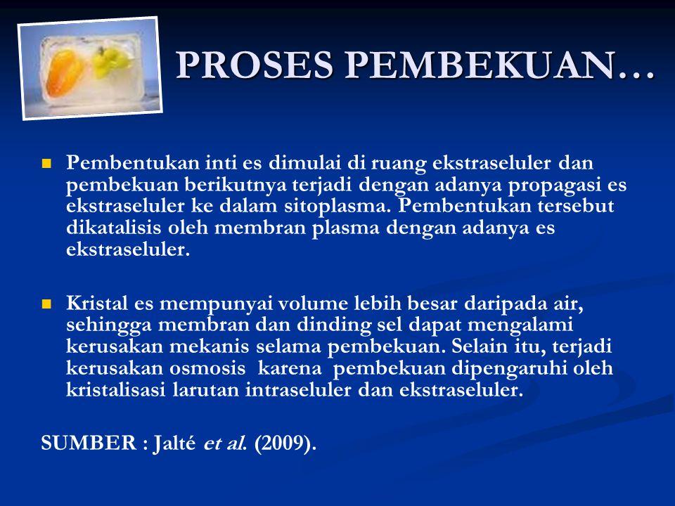 PROSES PEMBEKUAN… Pembentukan inti es dimulai di ruang ekstraseluler dan pembekuan berikutnya terjadi dengan adanya propagasi es ekstraseluler ke dalam sitoplasma.