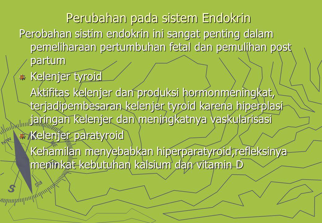 Perubahan pada sistem Endokrin Perobahan sistim endokrin ini sangat penting dalam pemeliharaan pertumbuhan fetal dan pemulihan post partum Kelenjer tyroid Aktifitas kelenjer dan produksi hormonmeningkat, terjadipembesaran kelenjer tyroid karena hiperplasi jaringan kelenjer dan meningkatnya vaskularisasi Kelenjer paratyroid Kehamilan menyebabkan hiperparatyroid,refleksinya meninkat kebutuhan kalsium dan vitamin D