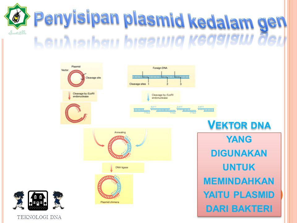 Macam-macam rekombinasi DNA Alasan dapat dilakukan rekombinasi DNA FAKTOR-FAKTOR DNA REKOMBINAN TEKNOLOGI DNA