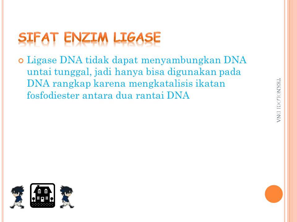 BEBERAPA ENZIM RESTRIKSI ENDONUKLEASE DAN TEMPAT PEMOTONGANNYA Sumber / mikroorganisme Nama enzim Tempat / urutan pemotongan Escherichia coli RY 13 Ec