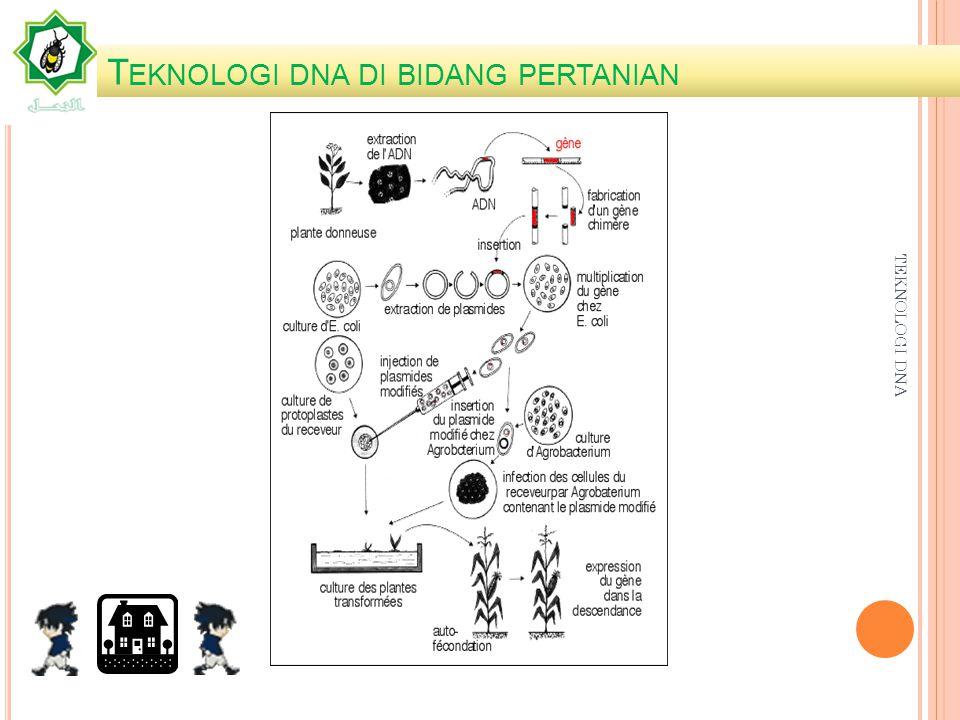 A PLIKASI TEKNOLOGI DNA Bidang Pertanian Bidang kesehatan Bidang Lingkungan Bidang Industri