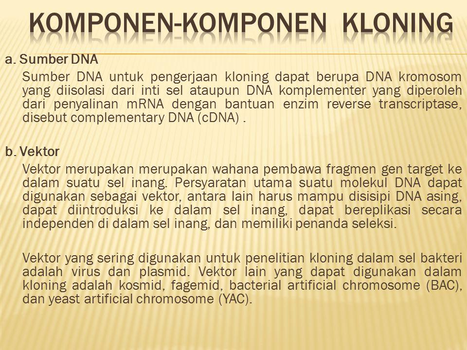 a. Sumber DNA Sumber DNA untuk pengerjaan kloning dapat berupa DNA kromosom yang diisolasi dari inti sel ataupun DNA komplementer yang diperoleh dari