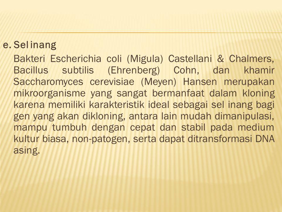 e. Sel inang Bakteri Escherichia coli (Migula) Castellani & Chalmers, Bacillus subtilis (Ehrenberg) Cohn, dan khamir Saccharomyces cerevisiae (Meyen)