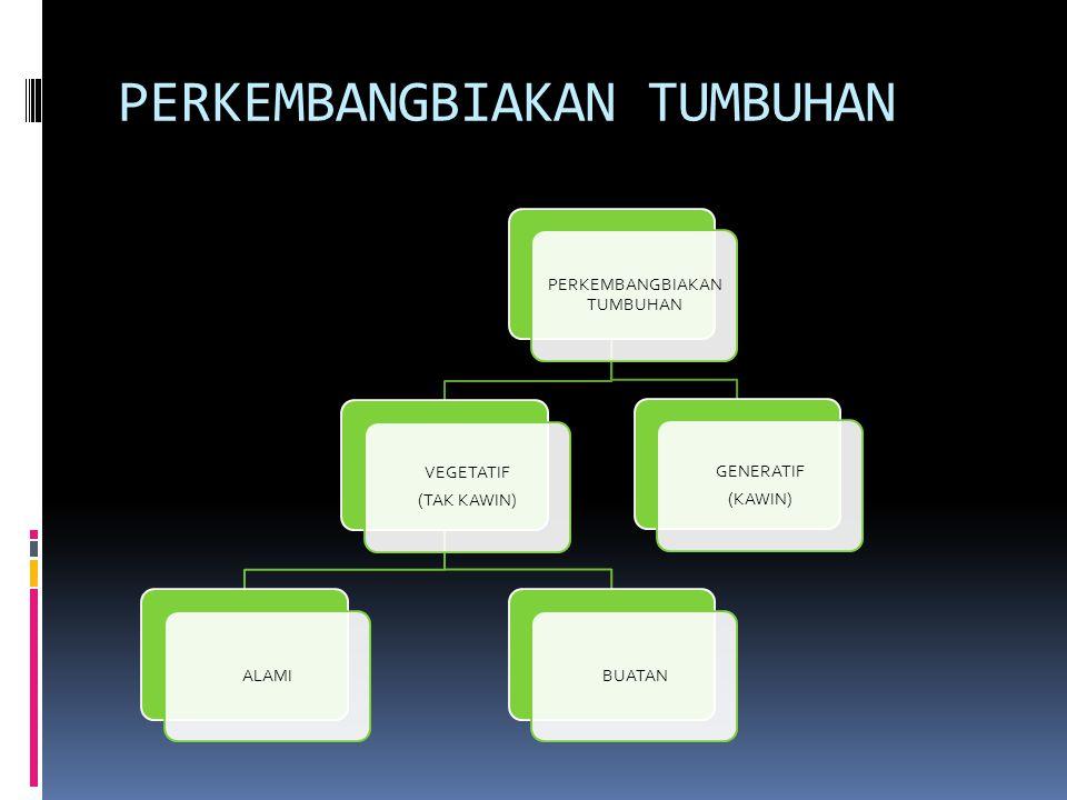 PERKEMBANGBIAKAN TUMBUHAN VEGETATIF (TAK KAWIN) ALAMIBUATAN GENERATIF (KAWIN)