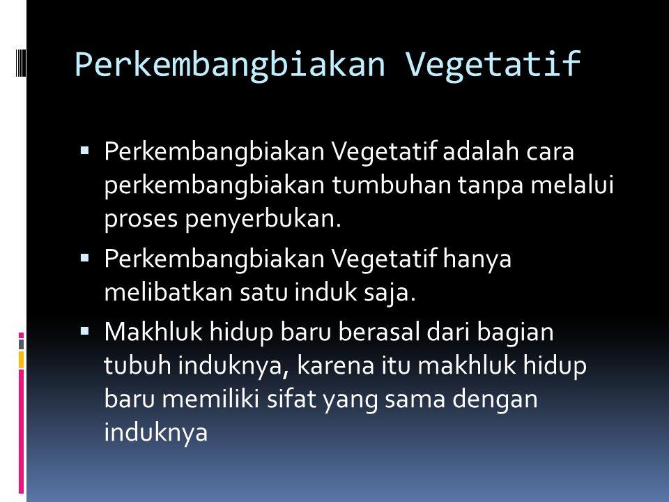 Perkembangbiakan Vegetatif PPerkembangbiakan Vegetatif adalah cara perkembangbiakan tumbuhan tanpa melalui proses penyerbukan. PPerkembangbiakan V