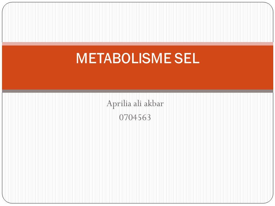 Aprilia ali akbar 0704563 METABOLISME SEL
