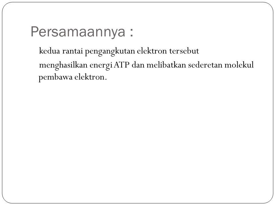 Persamaannya : kedua rantai pengangkutan elektron tersebut menghasilkan energi ATP dan melibatkan sederetan molekul pembawa elektron.