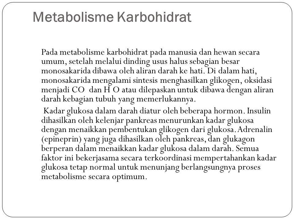 Metabolisme Karbohidrat Pada metabolisme karbohidrat pada manusia dan hewan secara umum, setelah melalui dinding usus halus sebagian besar monosakarida dibawa oleh aliran darah ke hati.