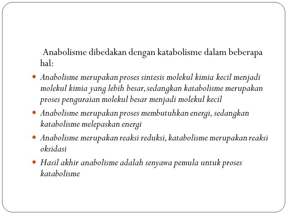 Anabolisme dibedakan dengan katabolisme dalam beberapa hal: Anabolisme merupakan proses sintesis molekul kimia kecil menjadi molekul kimia yang lebih besar, sedangkan katabolisme merupakan proses penguraian molekul besar menjadi molekul kecil Anabolisme merupakan proses membutuhkan energi, sedangkan katabolisme melepaskan energi Anabolisme merupakan reaksi reduksi, katabolisme merupakan reaksi oksidasi Hasil akhir anabolisme adalah senyawa pemula untuk proses katabolisme
