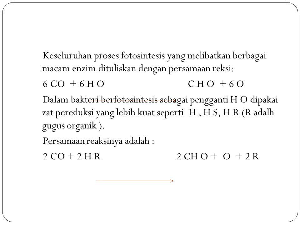 Keseluruhan proses fotosintesis yang melibatkan berbagai macam enzim dituliskan dengan persamaan reksi: 6 CO + 6 H O C H O + 6 O Dalam bakteri berfotosintesis sebagai pengganti H O dipakai zat pereduksi yang lebih kuat seperti H, H S, H R (R adalh gugus organik ).