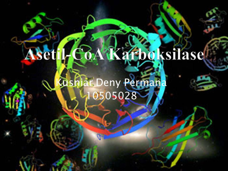 Kusniar Deny Permana 10505028