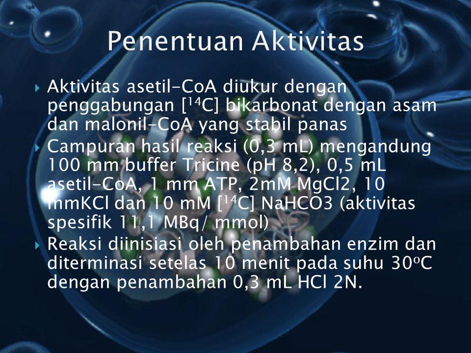  Aktivitas asetil-CoA diukur dengan penggabungan [ 14 C] bikarbonat dengan asam dan malonil-CoA yang stabil panas  Campuran hasil reaksi (0,3 mL) me