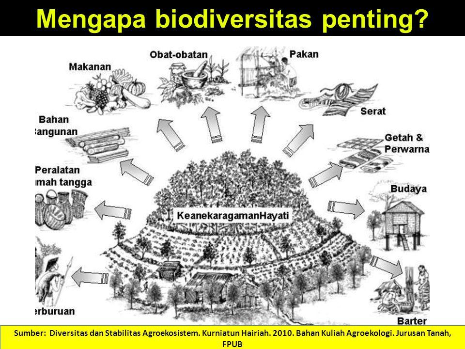 Mengapa biodiversitas penting? Sumber: Diversitas dan Stabilitas Agroekosistem. Kurniatun Hairiah. 2010. Bahan Kuliah Agroekologi. Jurusan Tanah, FPUB