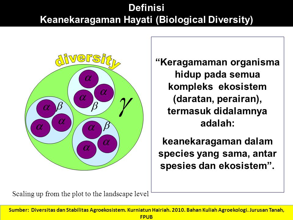 Skala Diversitas              α= Variasi spesies dalam sebagian kecil dari komunitas β= Diversitas spesies pada berbagai habitat atau komunitas δ=Diversitas spesies pada skala lebih besar, mis.
