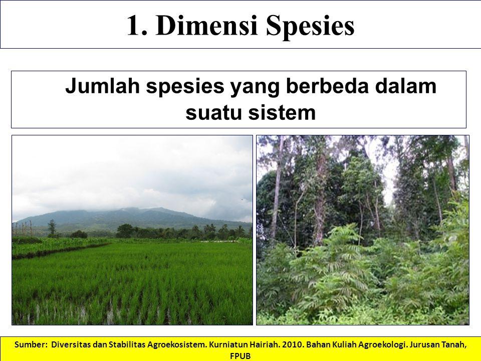 Jumlah spesies yang berbeda dalam suatu sistem 1. Dimensi Spesies Sumber: Diversitas dan Stabilitas Agroekosistem. Kurniatun Hairiah. 2010. Bahan Kuli