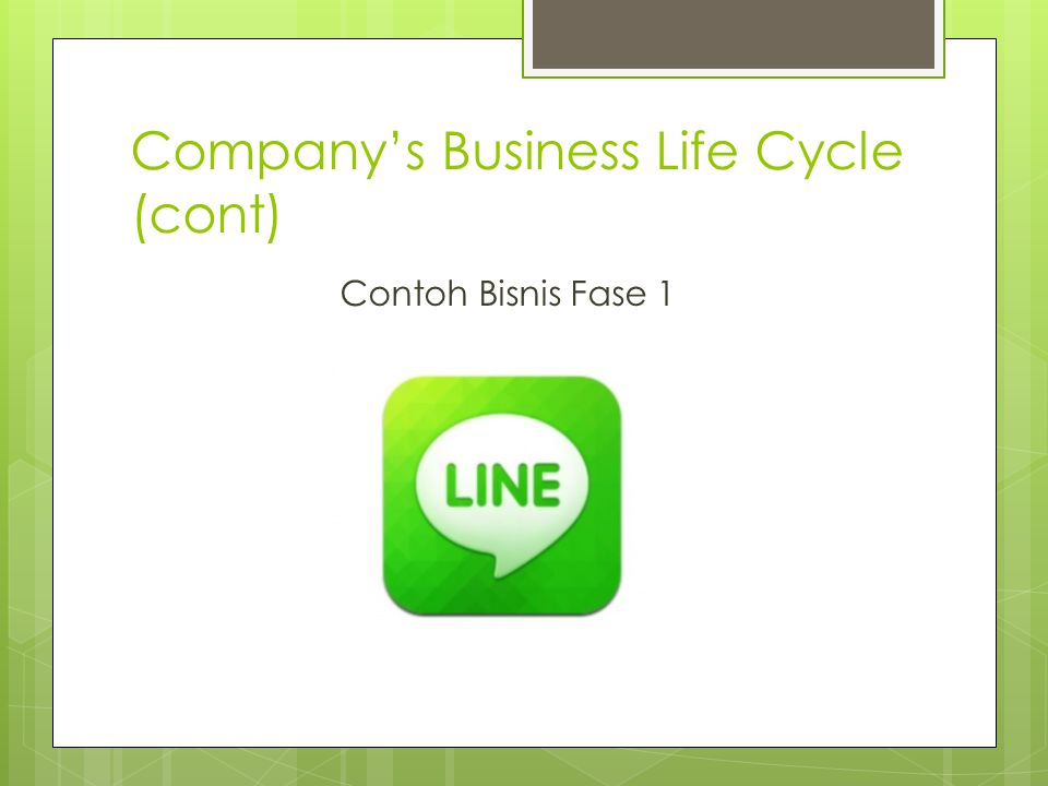 Company's Business Life Cycle (cont) Contoh Bisnis Fase 1