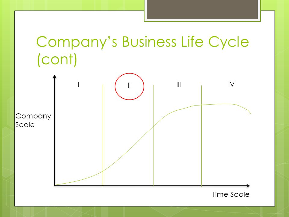 Company's Business Life Cycle (cont) Company Scale Time Scale IIIIVI II