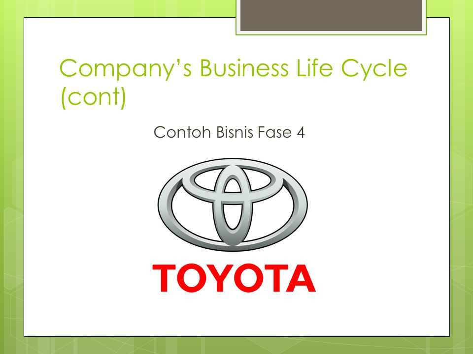 Company's Business Life Cycle (cont) Contoh Bisnis Fase 4