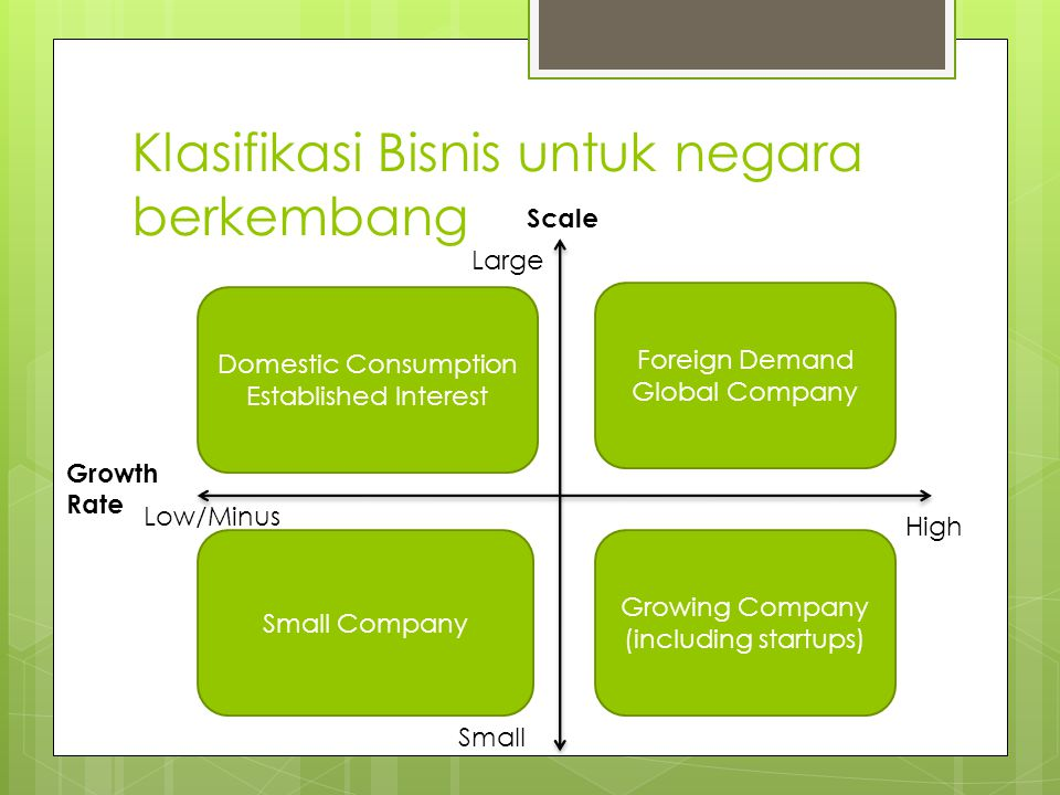 Company's Business Life Cycle (cont) Contoh Bisnis Fase 3