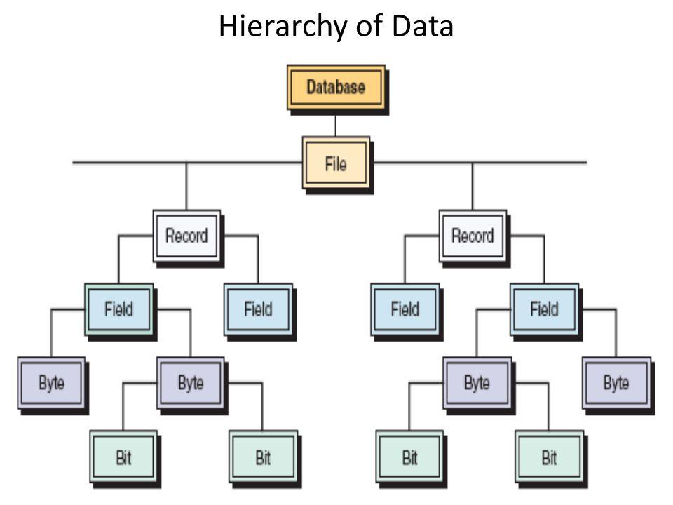 Bit : (binary digit): satuan data terkecil yang dapat diolah oleh komputer. Byte : kumpulan sejumlah bit yang mewakili satu karakter yang dapat berupa