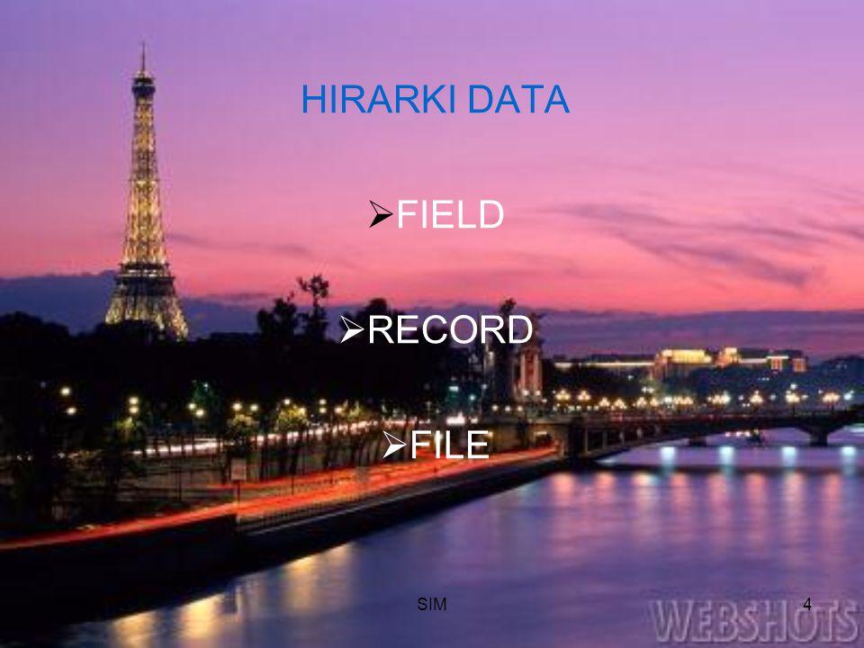 SIM4 HIRARKI DATA  FIELD  RECORD  FILE